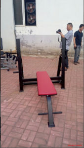 Fitness Equipment/ Gym Equipment/ Olympic Flat Bench (SW37) pictures & photos