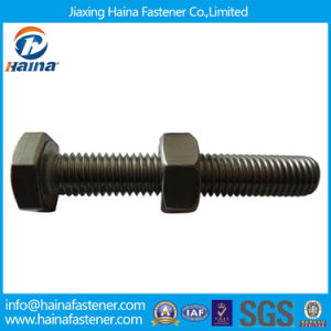 Carbon Steel and Stainless Steel Assembled Hex Bolt with Nut pictures & photos