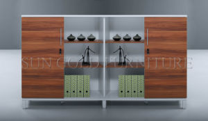 Office Furniture Modern Design File /Book Cabinet Designs (SZ-FCT612) pictures & photos