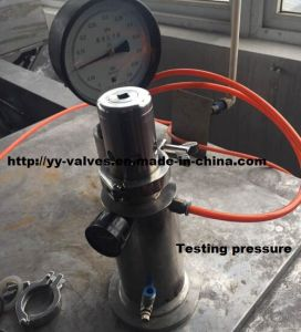 Tank Pressure Relief Valve (Adjustable Type) pictures & photos