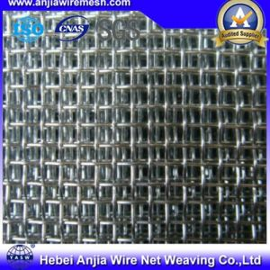 Hot-Dipped Galvanized Square Wire Mesh with Ce for Construction pictures & photos