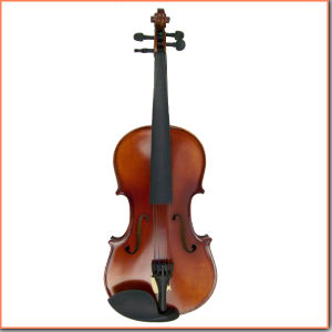 Quality Handmade Professional German Style Violin pictures & photos