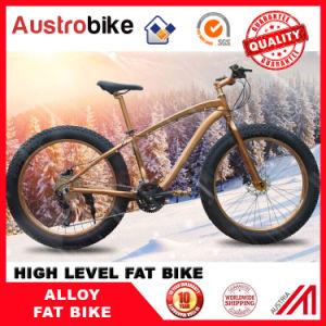 Wholesale The Lowerst Price Fatbike Full Suspension Fork, Fat Bike Frame Aluminium, Carbon Fatbike Frame Carbon Fat Bike for Sale