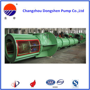 Dsez Pull-out Type Vertical Mixed Flow Pump