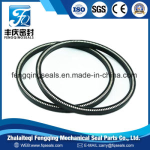 Auto Parts PTFE Mechanical Stainless Steel Spring Energized Seal pictures & photos