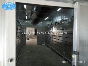 Low Temperature High Humidity Air Defreezer Machine pictures & photos