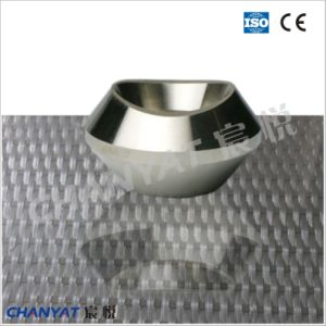 Alloy Steel Forged Fitting Weldolet 1.0432, C21 pictures & photos
