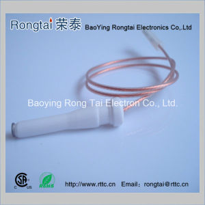 Ignition Electrode for Gas Oven /Gas Cooker pictures & photos