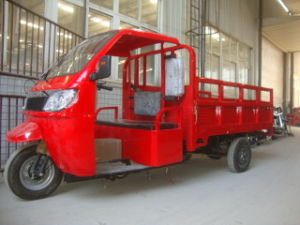 Advertising Cargo Tricycle/Trike pictures & photos