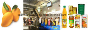 Mango Pulp Process Production Plant pictures & photos
