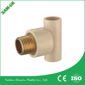Wholesale CPVC Plastic Injection Pipe Fittings CPVC Fittings Threaded Female Adapter pictures & photos