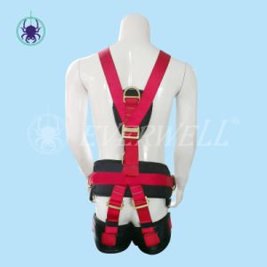 Full Body Harness with Waist Belt and EVA Block (EW0117H) pictures & photos