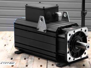 AC Permanent Magnet Servo Motor (215ysd18f 125nm 1800rpm) pictures & photos