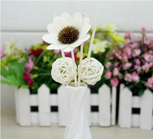 OEM Aromatherapy Fragramce Gift Set pictures & photos