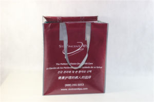Hot Selling PP Non Woven Bag with BSCI, Qca Approval (MECO501) pictures & photos