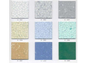 Anti-Static PVC Floor Used in The Purification Zone pictures & photos