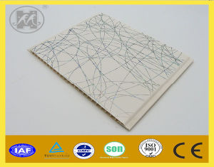 New Decorate PVC Panel for Ceiling and Wall Decoration Various Size pictures & photos