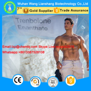 99% Trenbolone Enanthate 10161-33-8 Powerful Anabolic Steroid for Muscle Growth pictures & photos