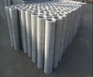 Stainless Steel Micron Wire Mesh Sieve/Filter Wire Mesh pictures & photos