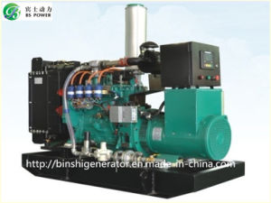 Cummins LNG Electric Generator Set pictures & photos