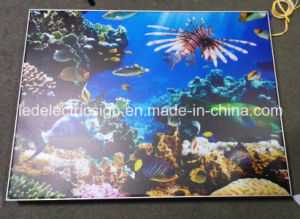Frameless Fabric LED Light Box with Snap Frame pictures & photos