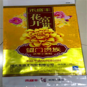 25kg Customized Plastic Flour Packing pictures & photos