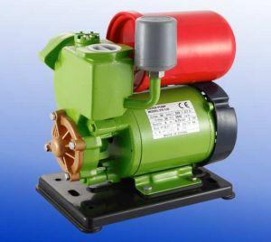 Automatic Self-Priming Peripheral Pump (PS130)