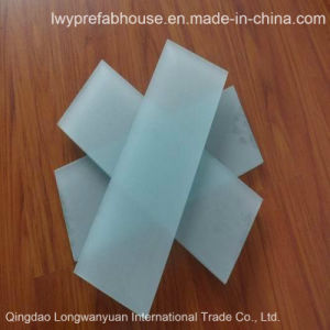 Tempered Insulated Frosted/Clear Glass Panel for Multi-Purpose (LWY-TG28)