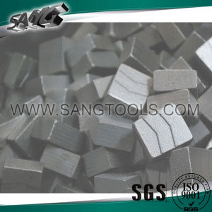 Diamond Segments for Us Bluestone pictures & photos
