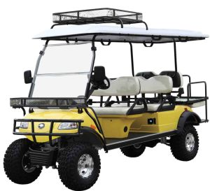 Electric Hunting Car Smart Buggy (DEL2042DL2Z, 4-Seater) pictures & photos