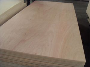 1220X2440X18mm Commercial Plywood pictures & photos