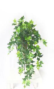 Artificial Plants and Flowers of Hanging Vine Gu-Mx-Potato-Vine-2.4m pictures & photos