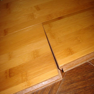 Design Eco Forest Water Proof Natural Bamboo Flooring pictures & photos
