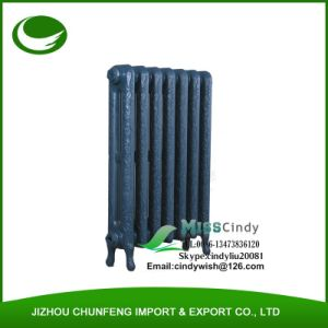 Designer Cast Iron Radiator with Ornament Pattern pictures & photos