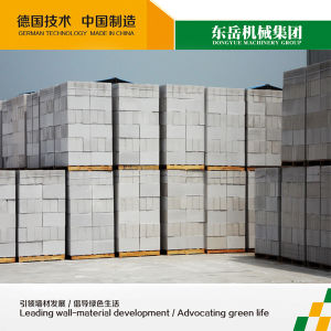 Professional AAC Block Supplier Dongyue Machinery Group (35 lines abroad in 6 countries, 14 lines in India) pictures & photos