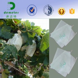 China Manufacture Custom Made Biodegradable Kraft Paper Bag for Grape Growing Protective pictures & photos