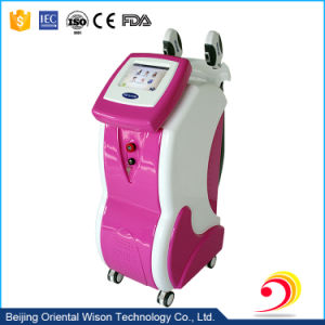 2 in 1 Freckle Removal Hair Removal IPL RF SPA Equipment pictures & photos