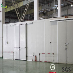 Thermal Insulated Fast Building Cold Storage Room for Meat pictures & photos
