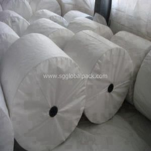 China White PP Woven Raffia Fabric for Making Bags pictures & photos