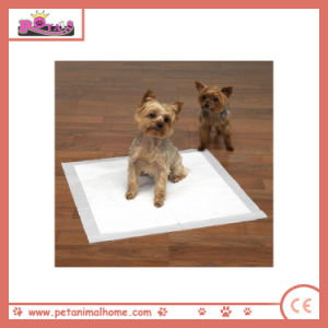 60*60cm Highly Absorbent Disposable Dog PEE Pad in White pictures & photos