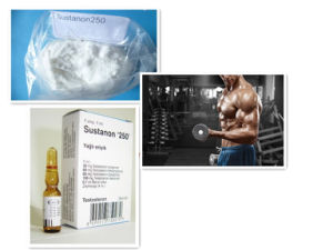 Muscle Growth Testosterone Enanthate Powder Testosterone Sustanon /Test SUS 250 pictures & photos