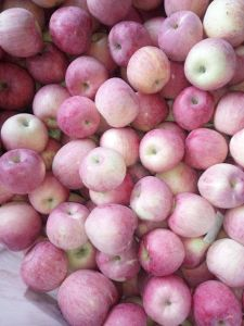 2016 Crop Fresh FUJI Apple pictures & photos