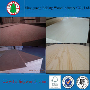 1220X2440mm Good Quality of Chinese Furniture Grade Commercial Plywood
