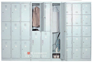 High Quality Steel Cabinets with Doors (DG-33) pictures & photos