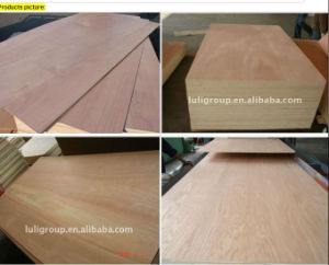 Melamine Glue Plywood pictures & photos