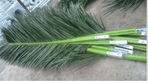 Custom-Made Palm/Pine Telecom Tube Sheet Tower pictures & photos
