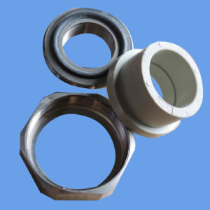 Hot Sale PPR Female Union Water Supply PPR Fittings pictures & photos