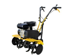 CE Approved Cheap 5.5HP Gasoline Power Rotary Cultivator (TIG5560) pictures & photos