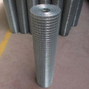 Galvanized Welded Wire Mesh Before Welding pictures & photos