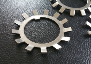 Lock Washer, Lock Gasket, Ss304 Washer, Ss316 Washer pictures & photos